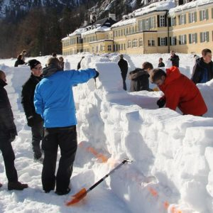Schneebarbau