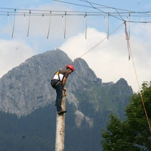 Pamper Pole